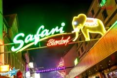 safari_by_nordischpic_hamburg_grossefreiheit_03.11.18 (37 von 38)